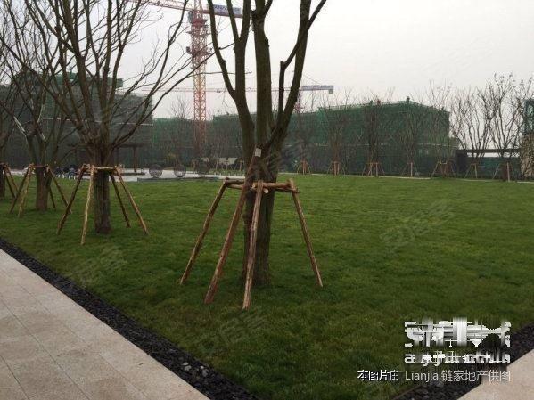 重庆北部新区金州小学