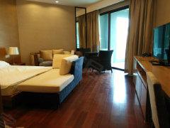 清水湾,5星级酒店装修,1房1厅,欢迎来电咨询