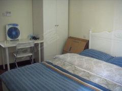 吉田国际精装大两房 户型大气 阳光充足  中央空调调全新出租