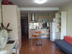 整租,白塔小区,1室1厅1卫,50平米