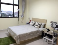 整租,开源小区,1室1厅1卫,42平米