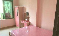 整租,新华家园单身公寓,1室1厅1卫