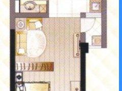 红谷滩新区红角洲紫金园 1室1厅 56平米 简单装修