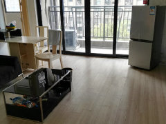 万达对面 绿地世纪城公寓 精装 两室一厅 拎包即住