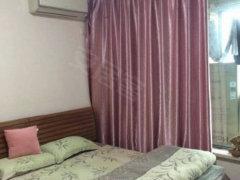 整租,鑫业家园,1室1厅1卫,44平米