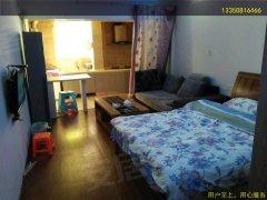 东门口江景楼精装全齐一室一厅