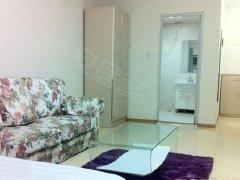 整租,领秀城,1室1厅1卫,45平米