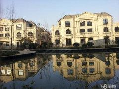 红谷滩高端别墅长租,实际面积400多平,栋距超宽,花园超大