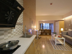 整租,红星国际红星美凯龙,1室1厅1卫,57平米